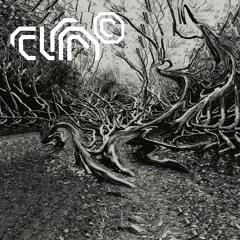 Nature of Chaos Vol. II - Preview