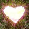 Download الرقية الشرعية للشيخ محمد جبريل لعلاج السحر والعين والحسد والحزن والهم باذن الله.mp3 Mp3