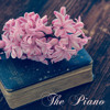 Claire de Lune (Piano)