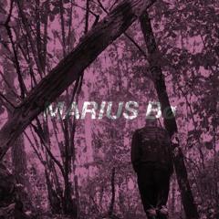 VESELKA PODCAST 030 | Marius Bø