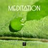 Meditation Music for Concentration (音楽療法)