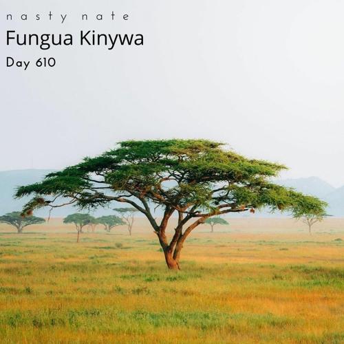 n a s t y  n a t e - Fungua Kinywa. Day 610 - AFRO + SOULFUL HOUSE