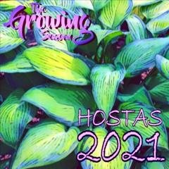 The Growing Season, June 26, 2021 - Hostas 2021