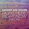 Right Here Right Now (Neon) (Ed Rush Vocal Mix)