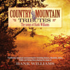Why Don't You Love Me (Country Mountain Tributes: Hank Williams Album Version)