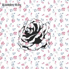 Tommy Rose - Wonder Why