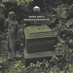 TR056 - Paper Birch - 'Summer Daze'