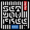 Set You Free (Roy Dest Remix)