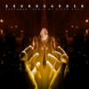 Spoonman (Steve Aoki Remix)