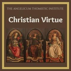 "Fr. Michael Sherwin O.P - ""Christian virtue: Faith"""