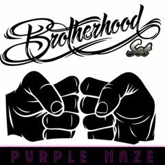 PVRPLE HAZE - Brotherhood Set
