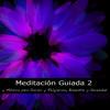 Canciones de Cuna (Música Instrumental Relajante para Bebes Dormir)