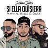 Si Ella Quisiera (feat. Gadiel & Yandel) Portada del disco