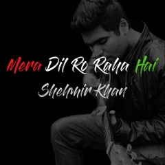 Mera Dil Ro Raha Hai  - Shehmir Khan (Original Song)