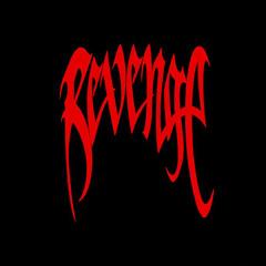 REVENGE! ft sonindigo