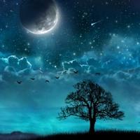 Blue Dream (ZODIAC Ultimate Beat Contest)