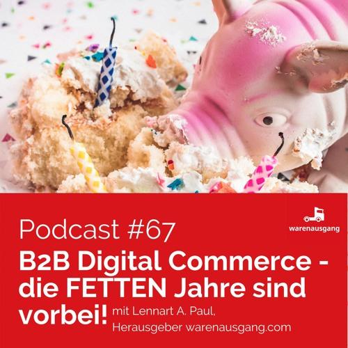 B2B Digital Commerce - die FETTEN Jahre sind vorbei!