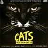 Macavity: The Mystery Cat (Karaoke Version)