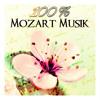 Concerto for Flute and Orchestra No. 1 in G Major, K. 313 (285c): III. Rondo - Tempo di menuetto (Harp Version)
