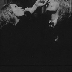 the weasley twins invite you to a party at their dorm
