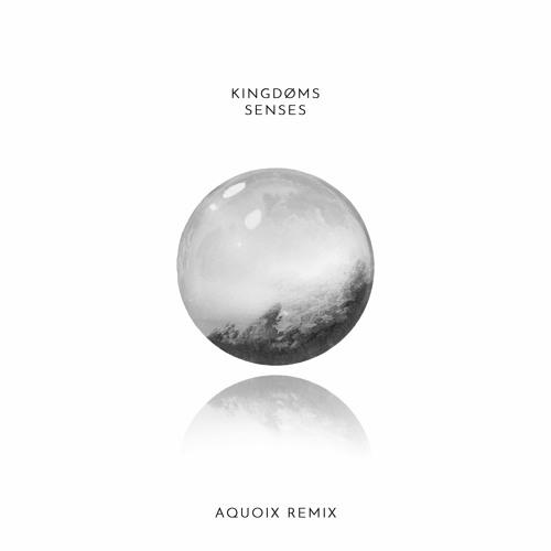 Kingdøms - Senses (AQUOIX Remix)