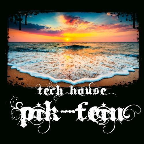 PIK-FEIN @ the SUN   TECH-HOUSE - OUTDOOR   11.06.2021