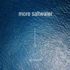 More Saltwater
