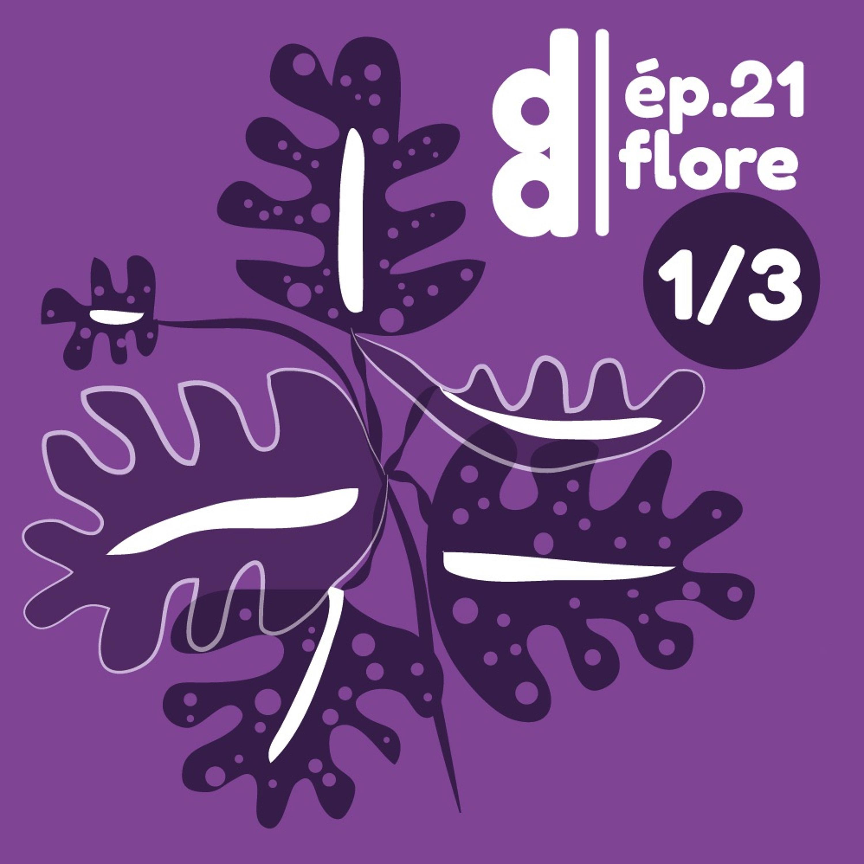 DESSIN DESSEIN // EP21 Flore - Partie 1 : le design phyto-centré avec Studio d.o.t.s.