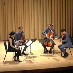 Variation V - Tesla Quartet
