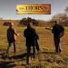 Among The Living (Album Version)