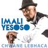 Isemanzini Inyoka (feat. Mbuzeni Mkhize)