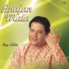 Chadariya Jhini Re Jhini (Album Version)