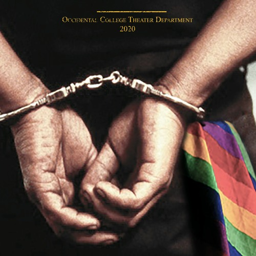 Statute 21.06: Homosexual Conduct, A New Work