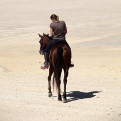 Graham Francksen - A Horse With No Name - Cover