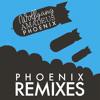 Fences (Friendly Fires Remix)
