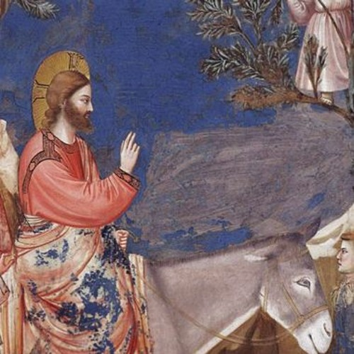 Meditation for the Feast of Palm Sunday