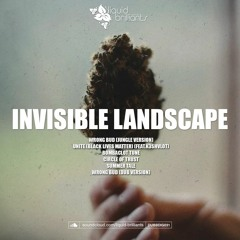 Invisible Landscape - Wrong Bud (Jungle Version)