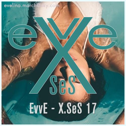 X.SeS 17