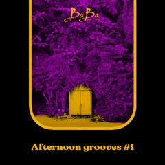 Afternoon Grooves vol.1