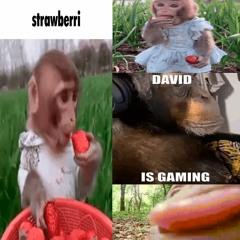 monke  and strawberri