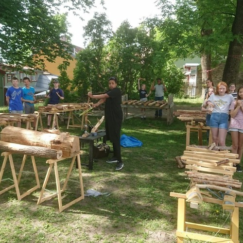 Årringer i Biermannsgården Sagene 6. trinn, 3. juni 2020