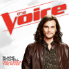 Hold Back The River (The Voice Performance)