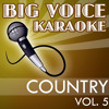 I've Been Everywhere (In the Style of Johnny Cash) [Karaoke Version]