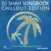 Armin van Buuren & DJ Shah featuring Chris Jones - Going Wrong (Acoustic Version)