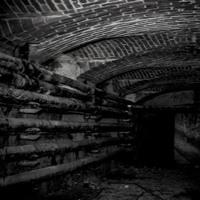 The Under Basement __ Robert Babicz