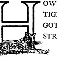 How the Tiger Got His Stripes - A Brazilian Fairytale