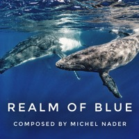 Realm Of Blue - by Michel Nader
