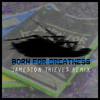 Born For Greatness (Jameston Thieves Remix)