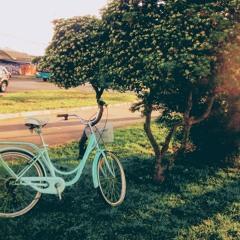 Bicycle 4 u