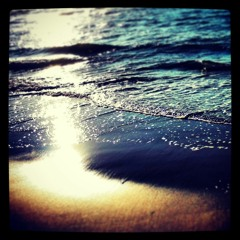 Down at the Seashore ( Nature Writing / Theological Reflection )